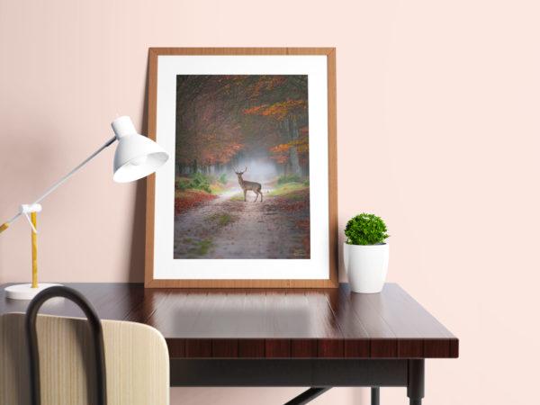 Hert in frame